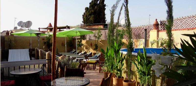 Les transats, les parasols et la piscine sur la terrasse... indispensables lorsqu'il fait chaud !
